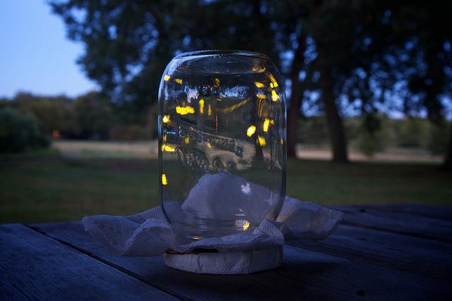 fireflies-in-a-jar-tumblr